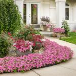 Bubblegum petunias bording a walkway