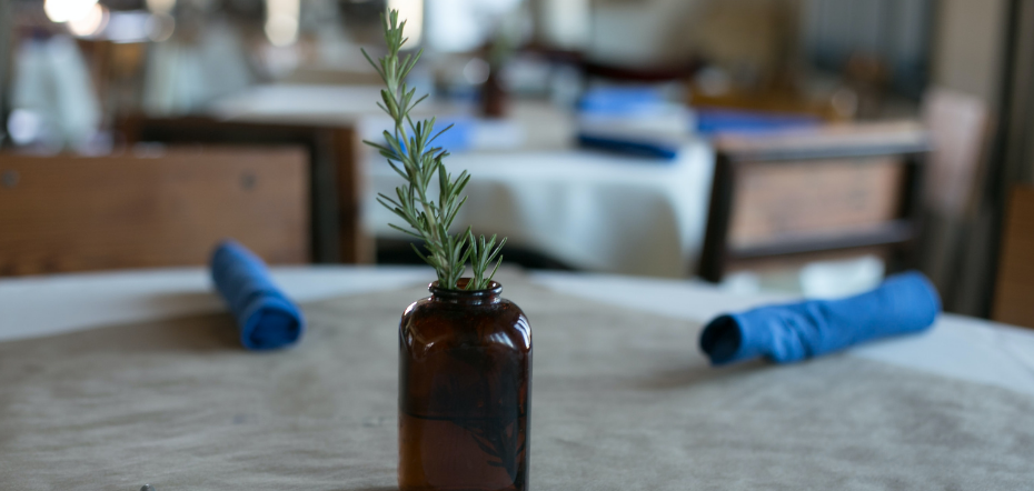 Rosemary Sprig in a Bottle of Water